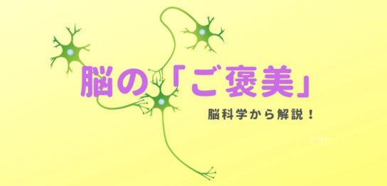 脳細胞シナプス
