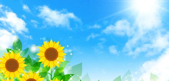 夏の太陽とひまわり